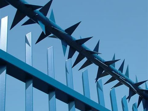 Anti Climb Wall Spikes And Rotary Anti Climb Spike Barrier