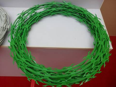 A coil of small sharp green painted razor barbed wire on the white back ground.