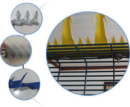 Our wall spikes can be in stainless steel material or painted in blue/yellow colors.